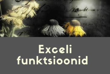exceli funktsioonid